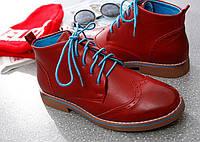 Ботинки оксфорды с синим шнурком в 3-х цветах