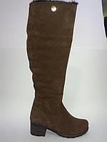 Замшевые женские зимние коричневые модные удобные стильные сапоги на устойчивом каблуке 36р Alseya