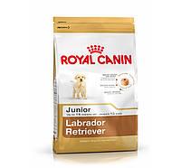 Сухой корм для собак Royal Canin Labrador Junior 33 (Роял Канин Лабрадор Джуниор) 1 кг