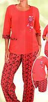 Женская трикотажная пижама Nicoletta