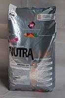 Сухой корм для котов Nutra Gold (Нутра Голд) Cat Breeder для всех возрастов 18.14 кг