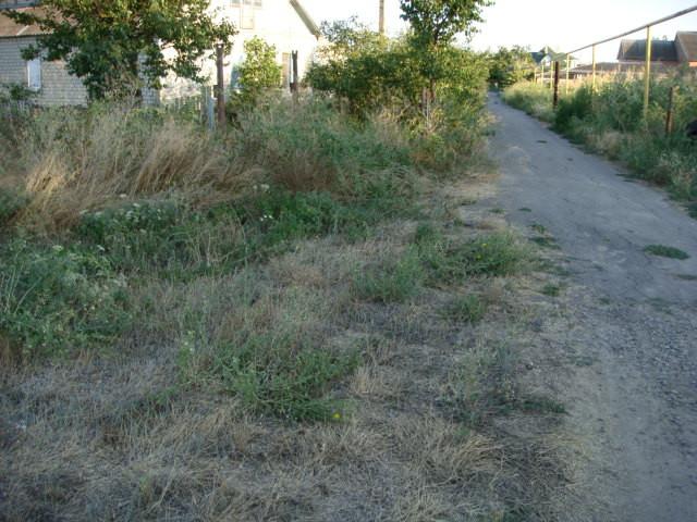 Продажа земельного участка 10 соток недорого, в Одесской области, Беляевский район, Великая Балка