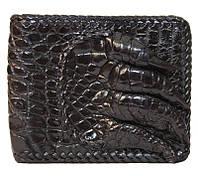 Портмоне из кожи крокодила с лапой ALM 04 PL Black