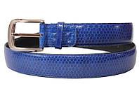 Ремень из кожи морской змеи.EXCLUSIVE 105 SNB Midnight Blue