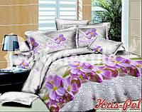 Постельное бельё двухспальное 180*220 хлопок (4302) TM KRISPOL Украина