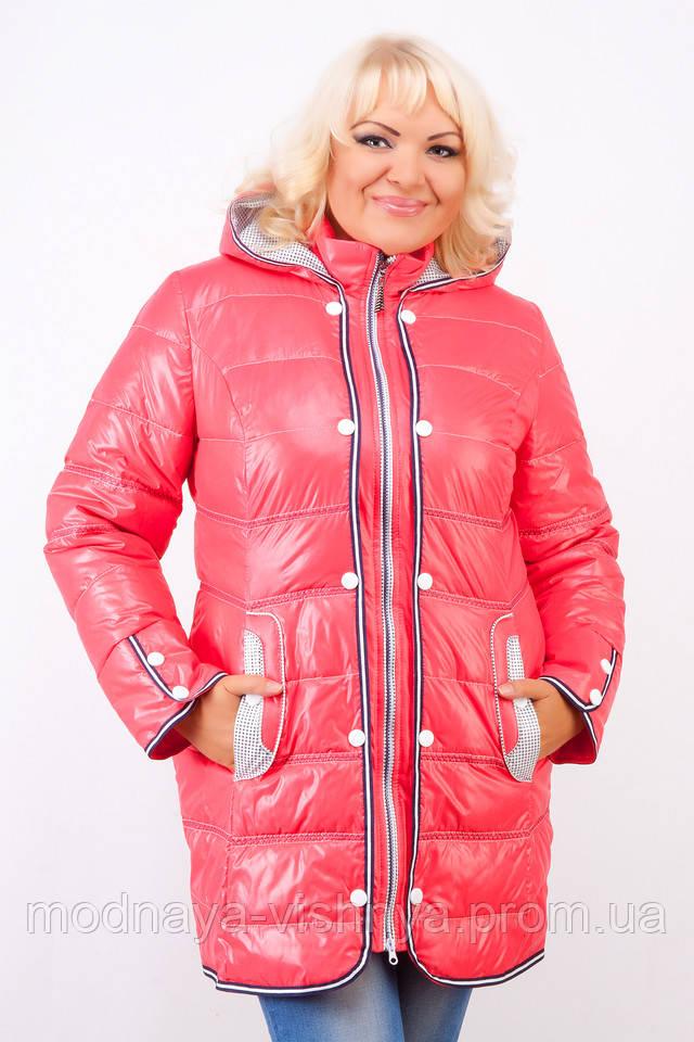 Купить Куртку Большого Размера В Интернет Магазине В Спб