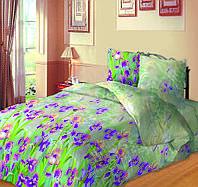 150703 Постельное белье Зоряне сяйво, семейный, дизайн Ирис