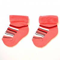 Зимние махровые носки для малышей с отворотом ТМ Дюна (арт.409)