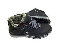 Мужские  зимние кожаные ботинки Ecco Biom black