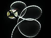 Светодиодная лента 5050 60LED IP20 Белый 6500К (Премиум)
