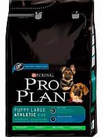 Pro Plan puppy large breed для щенков крупных пород 3 кг.