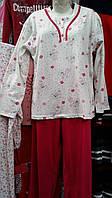 Женская пижама большого размера №6001 (штаны)