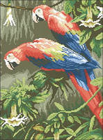 Схема на канве для вышивки крестом Попугаи Ара Ркан 3028