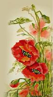 Вышивка бисером Маки (Цветы)