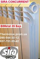 Радиатор биметаллический SIRA CONCURRENT 500/85, фото 1