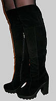 Замшевые ботфорты на толстом каблуке зимние