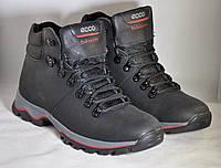 Зимние кожаные кроссовки Ecco biom молодежные современные