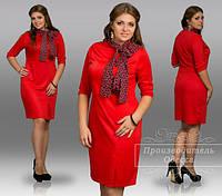 Платье женское нарядное лакост + шарф шифон размеры 48,50,52,54