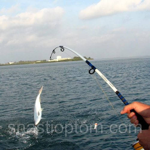 прогноз клева рыбы в клину