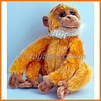 Мягкие игрушки обезьяны | Обезьяны сувениры недорого