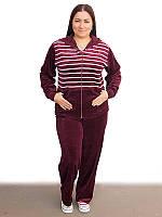 Женский велюровый спортивный костюм больших размеров (рр 50-62) в полоску