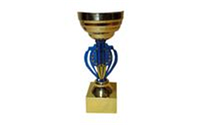 Кубок HQ905C (металл, пластик, h-19см, d чаши-8см, золото)