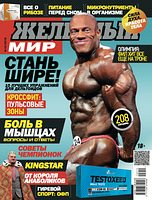 Журнал «Железный Мир» № 10/2015