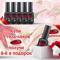 5 любых гель-лаков PNB - 6ой в подарок