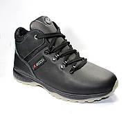 Мужские ботинки ECCO Gore-tex зима, кожа