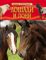 Лошади и пони  Детская энциклопедия