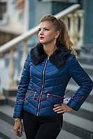 Куртка зимняя короткая темно-синий