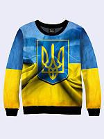 Мужской  Свитшот Символ Украины