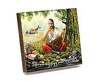 Шкатулка-книга на магните с 9 отделениями XL Козак Мамай