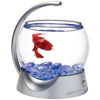 Аквариум для рыбки петушка Tetra Betta Bowl, Серый
