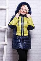 Женское зимнее пальто Жилет синее размеры 46-56