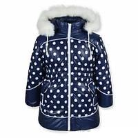Зимние пальто на девочек Анютка (Синее в горох) рр. 92-110