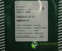 Семена томатов Ядвига F1 1000с, фото 1