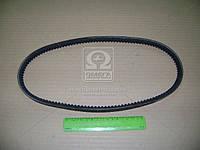 Ремень приводной клиновой Lanos (производство Bosch ), код запчасти: 1987947651