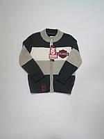 Кофта/ свитер на молнии для мальчиков тм Лютик 116р