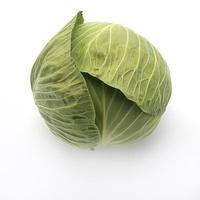 Капуста белокочанная Секома F1 1000 семян