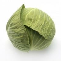 Капуста белокочанная Секома F1 1000 семян (калиброванные)
