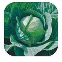 Капуста белокочанная Селма F1 2500 семян
