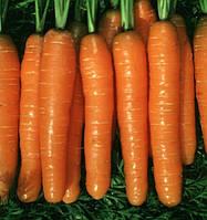 Семена моркови Монанта 1 кг