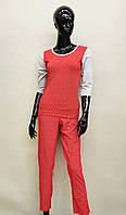 Женская пижама (кофта и штаны) из хлопка Ego