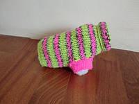 Укороченный вязаный свитер для собаки Амбер