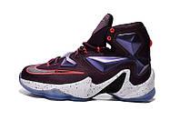 Баскетбольные кроссовки Nike Lebron 13 violet