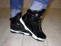 Д421 - Ботинки женские черные лаковые