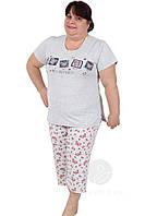 Пижама женская большого размера бриджи и футболка.