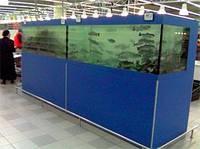 Торговые аквариумы Акватика для продажи живой рыбы