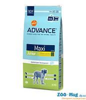 Корм ЭДВАНС (Advance) МАКСИ для молодых собак 15кг